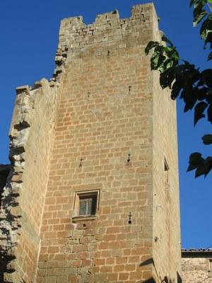 Montfalcó D'Ossó 2007 (4).jpg